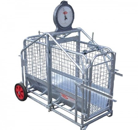 Galvanised Pig Weigher