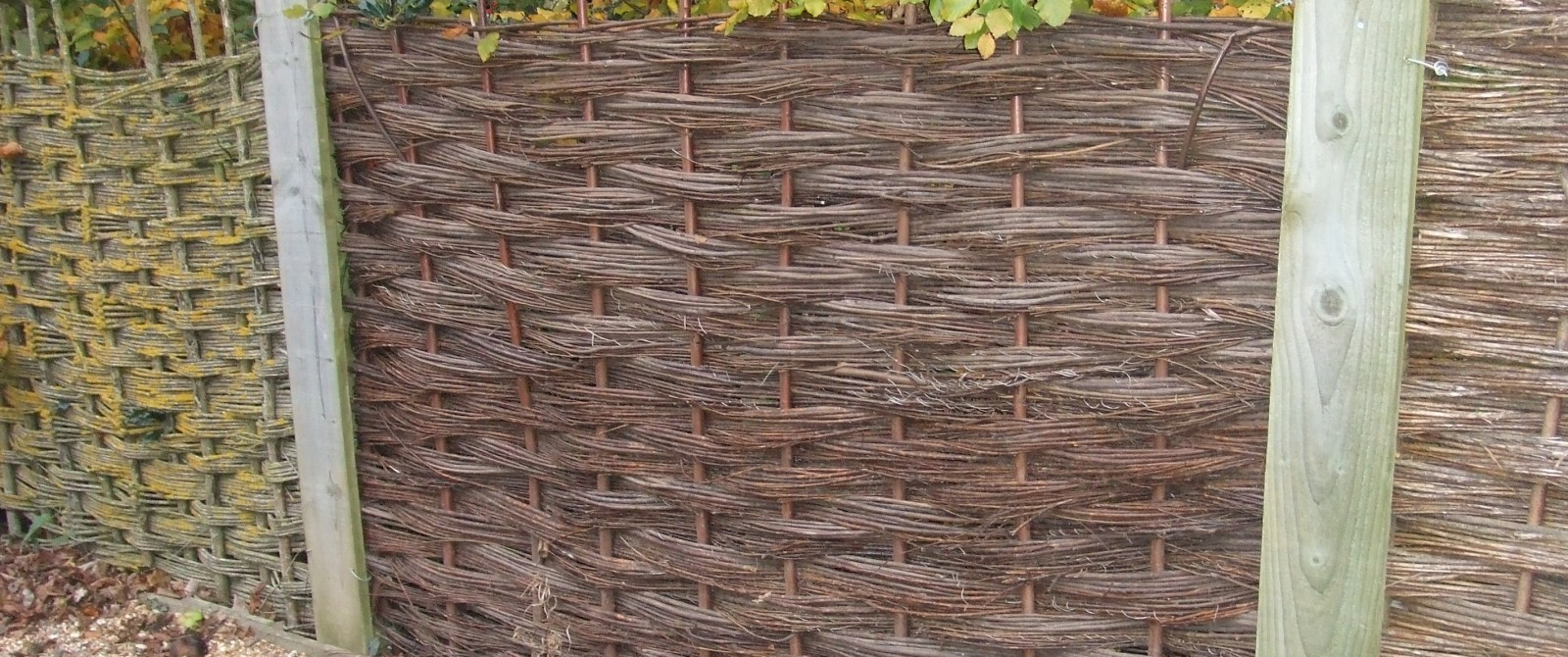 Willow Fence Panels. John Bright Fencing Dorset