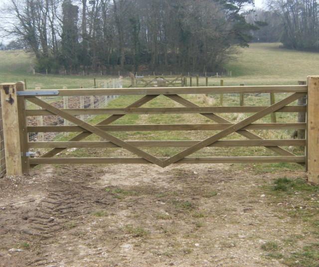 resized tan gate