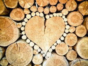 Logs with heart in centre
