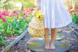 Barefoot woman with basket of daffodils in spring