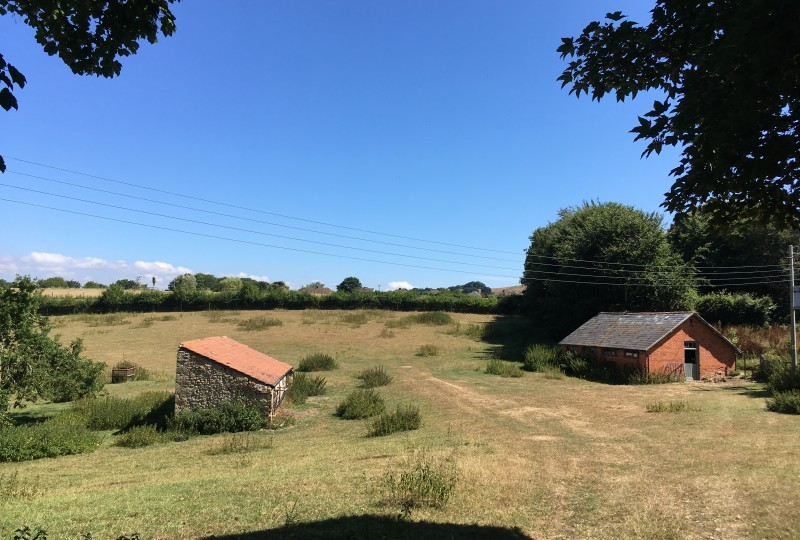 Walditch field and outbuildings in summer