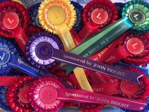 John Bright prize rosettes