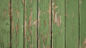 Peeling green wooden fence panels