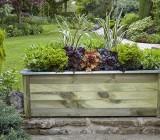 cambridge planter with plants