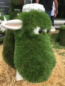 Grass cow