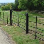 Black-painted-parkland-fencing-with-gate[1]