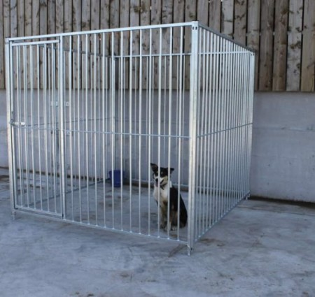 Galvanised Dog Runs