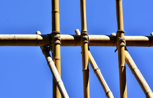 Garden bamboo canes tied together