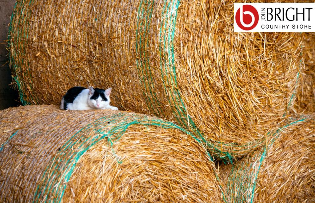 animal bedding facebook